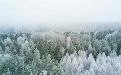 Winter-Challenge 2021 bei PROWIN A+W